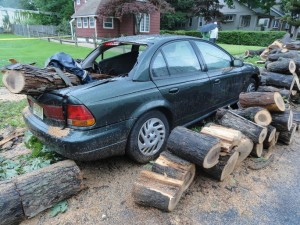 A nearby car was destroyed by the falling tree. Credit: Matt Skoufalos.