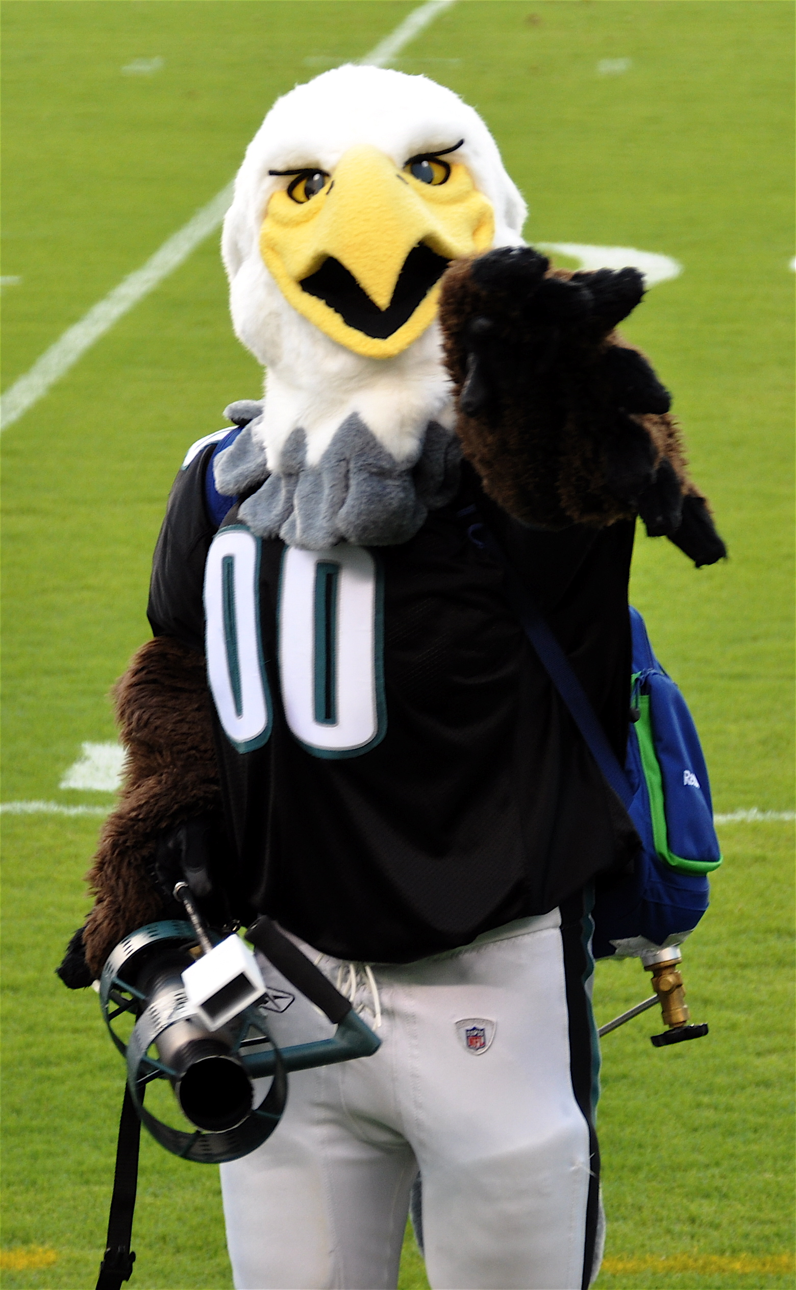 Swoop didn't need to silence Giants fans Sunday night--the Eagles did that all by themselves. Credit: Kevin Burkett. https://goo.gl/hPqNXb