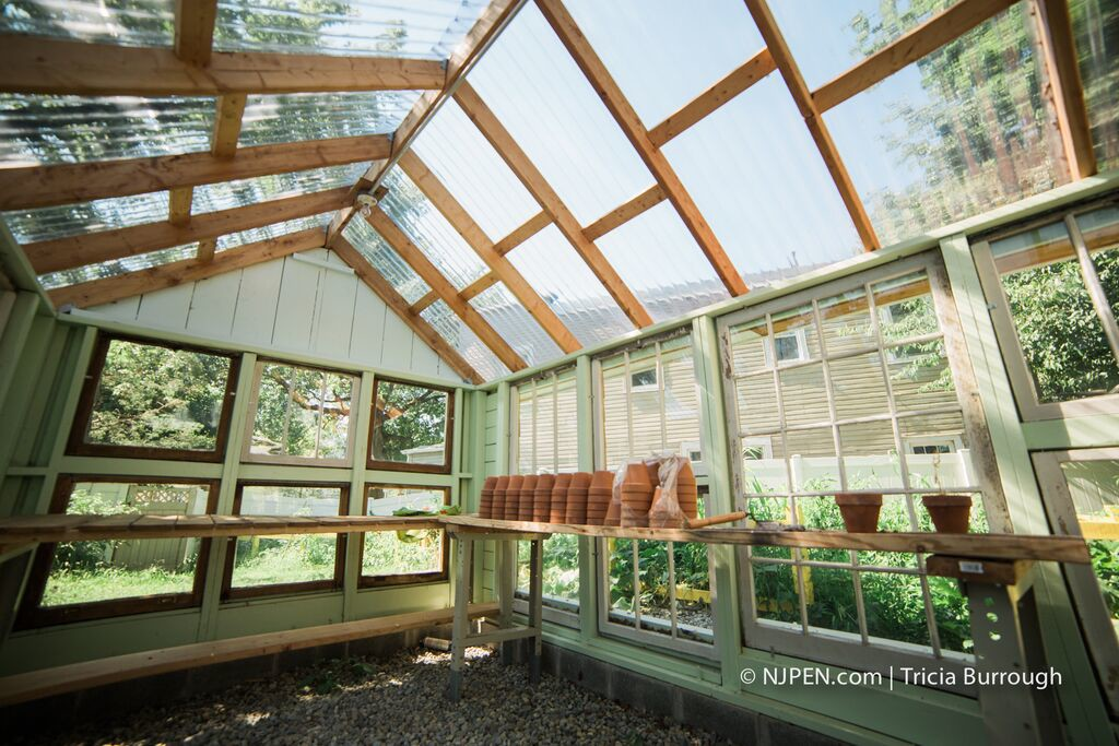 Interior, Faulseit's greenhouse. Credit: Tricia Burrough.