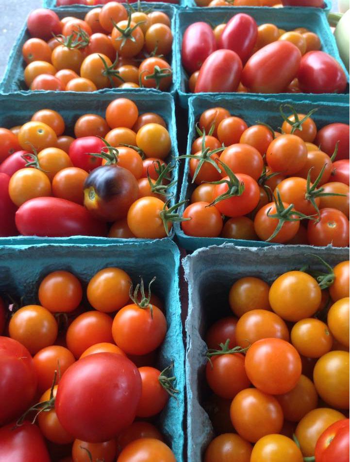 Tomatoes. Credit: Julie Pierre.
