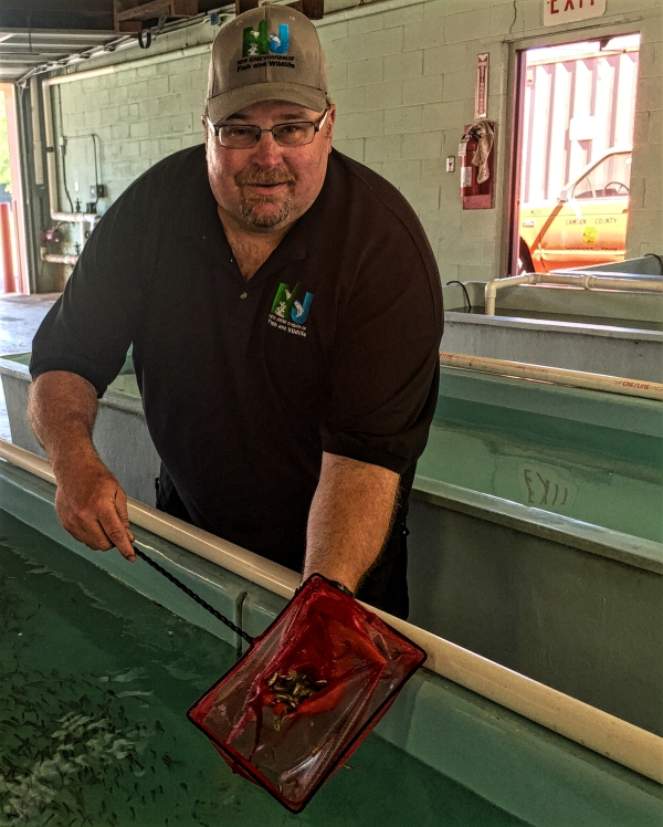 Hackettstown Fish Hatchery Superintendent Craig Lemon. Credit: Abby Schreiber.