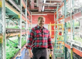 Metropolis Farms: Vertical Farming Designed to Grow out, not up