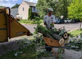 NJ Pen Weekly Recap: Straight-Line Storm, Summer Solstice
