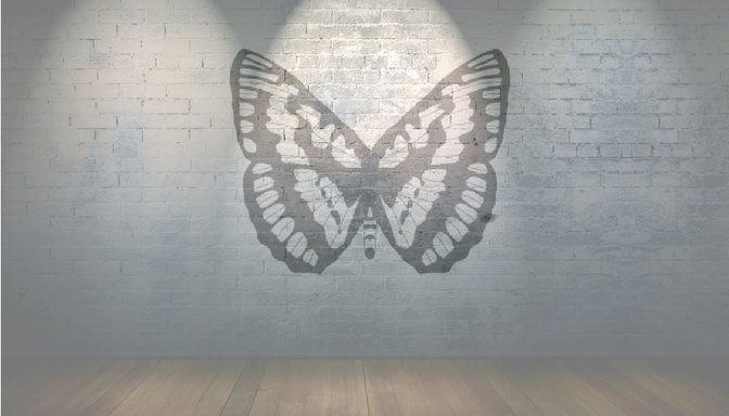 The Butterfly: A Radical Act of Community Storytelling