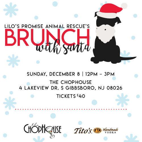 Lilo's Promise Animal Rescue's Brunch with Santa